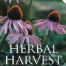 Herbal Harvest by Greg Whitten